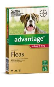 Advantage for Large Dogs 10-25kg